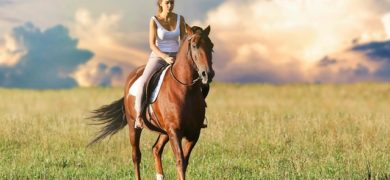 Séjour linguistique anglais et équitation 12-17 ans