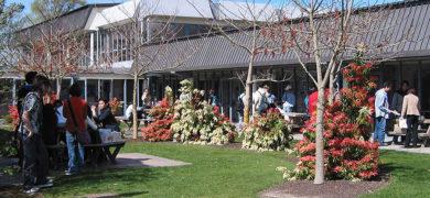 Séjour linguistique à CCEL Christchurch en Nouvelle Zélande
